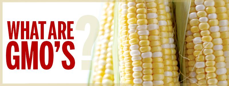 GMOS_banner#2